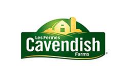 IMG-Cavendish-250x150