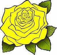 Rose Management LLC